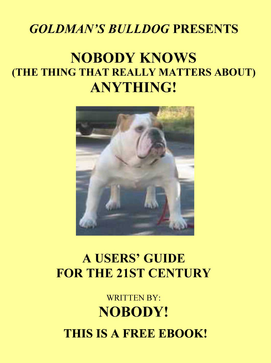 Nobody Knows Anything Link